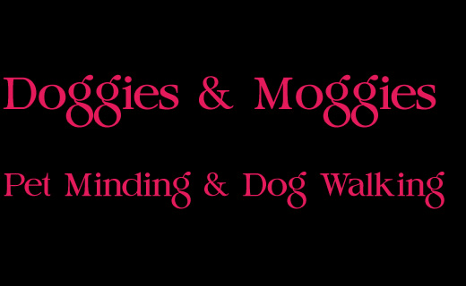 Pet Minding & Dog Walking